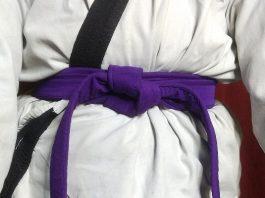 Dark Purple Belt Karate Meaning in Hindi | जानिए कराटे में गहरी बैंगनी बेल्ट का मतलब।